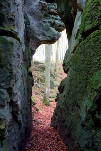 Mullertal Trail 1964