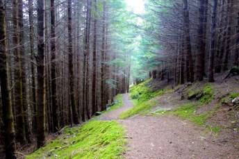 Hiking Schotland 2289