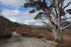 Hiking Schotland 2354