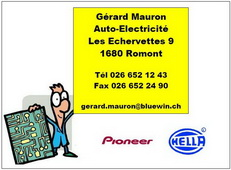 logo_mauronelectricite