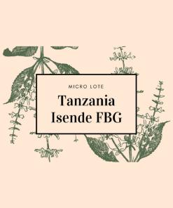 Tanzania Isende FBG