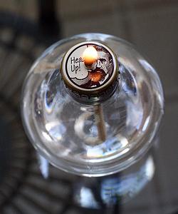 Comment Recycler Ses Ampoules En Objets Dcoratifs