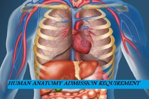 Human Anatomy Admission Requirement to Any University | Cut off Marks