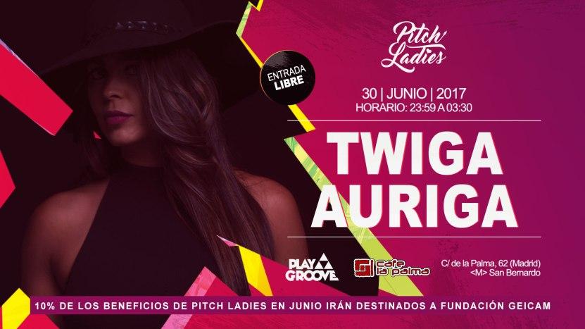 pitch_flyer_twiga_horiz
