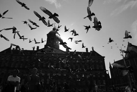 211_T4_01 Noise - Thema 4 - Urban Photo Race Amsterdam 2017