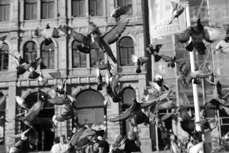 211_T4_03 Noise - Thema 4 - Urban Photo Race Amsterdam 2017