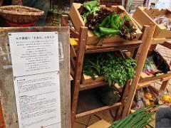 和歌山で、米一農園さん