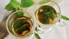 tomar té, té verde, rooibos, propiedades del té verde, té oolong, té blanco