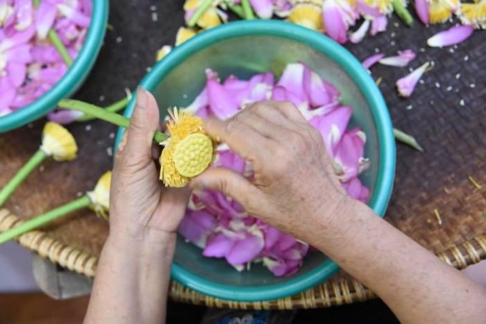 Quitando pétalos a la flor de loto