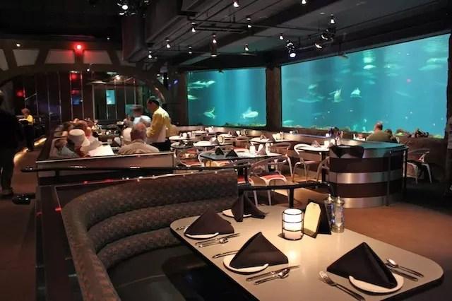 Sharks Underwater Grill 2