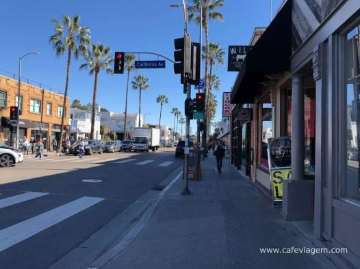 dicas Venice Beach California 40