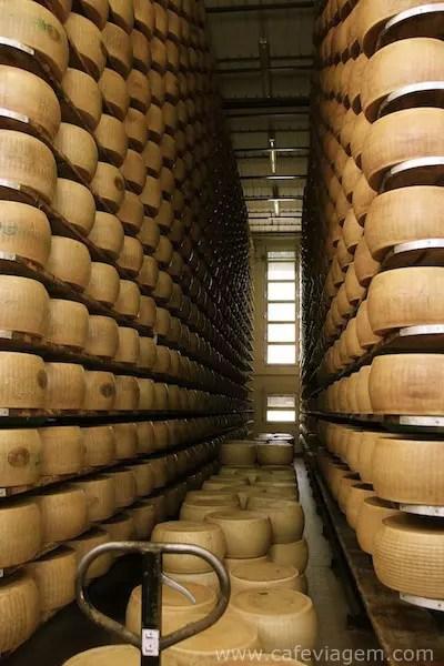 Parmigiano Reggiano (11)