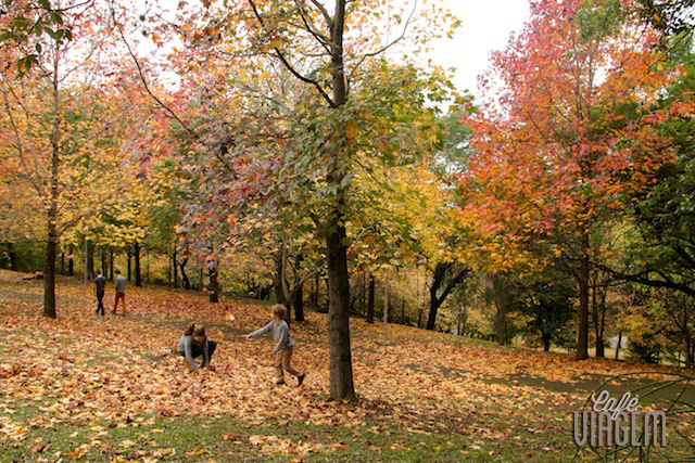 Outono Foto Alexandra Aranovich