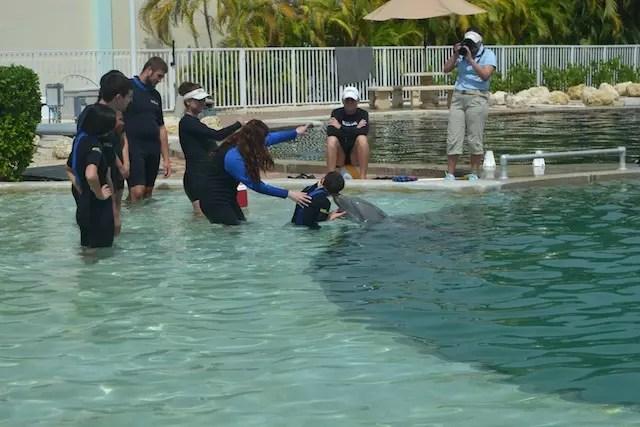 A interação com golfinhos no Miami Seaquarium