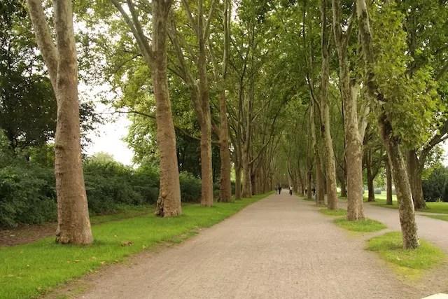"""uma caminhada pelo parque próximo à Universidade em direção ao """"Kwartier Latang"""" - área universitária dos bares e restaurantes mais em conta"""