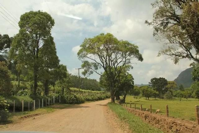 A estrada rural até o Ecoparque Sperry