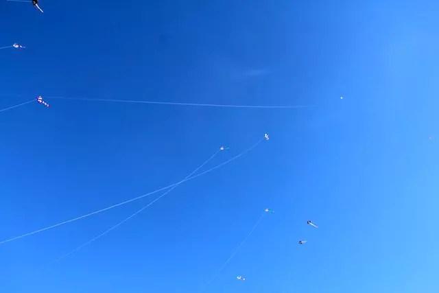 Kite Haulover Park Miami (7)