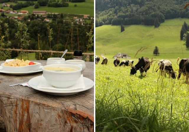 aproveitando o dia bom para comer ao ar livre apreciando o astral das montanhas suíças