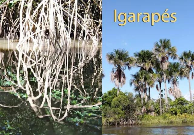 rio preguicas Barreirinhas copy