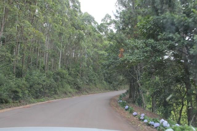 No início da estrada parece que vai ser tranquilo