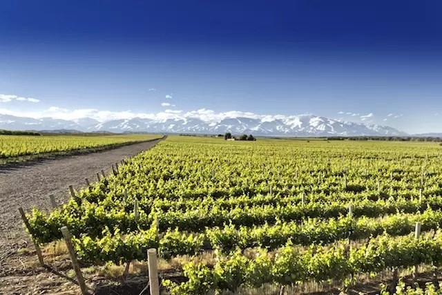Está nos planos do blog uma viagem à Mendoza