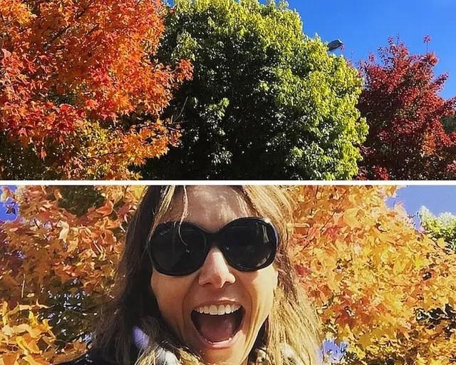 Dica do Café Viagem: no inverno/outono não deixe de tirar uma foto no estacionamento do Alpen que fica assim, colorido