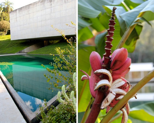 Natureza e arquitetura em sintonia. Pavilhão imperdível de Adriana Varejão do arquiteto Cerviño Lopez