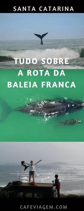 Rota da Baleia Franca