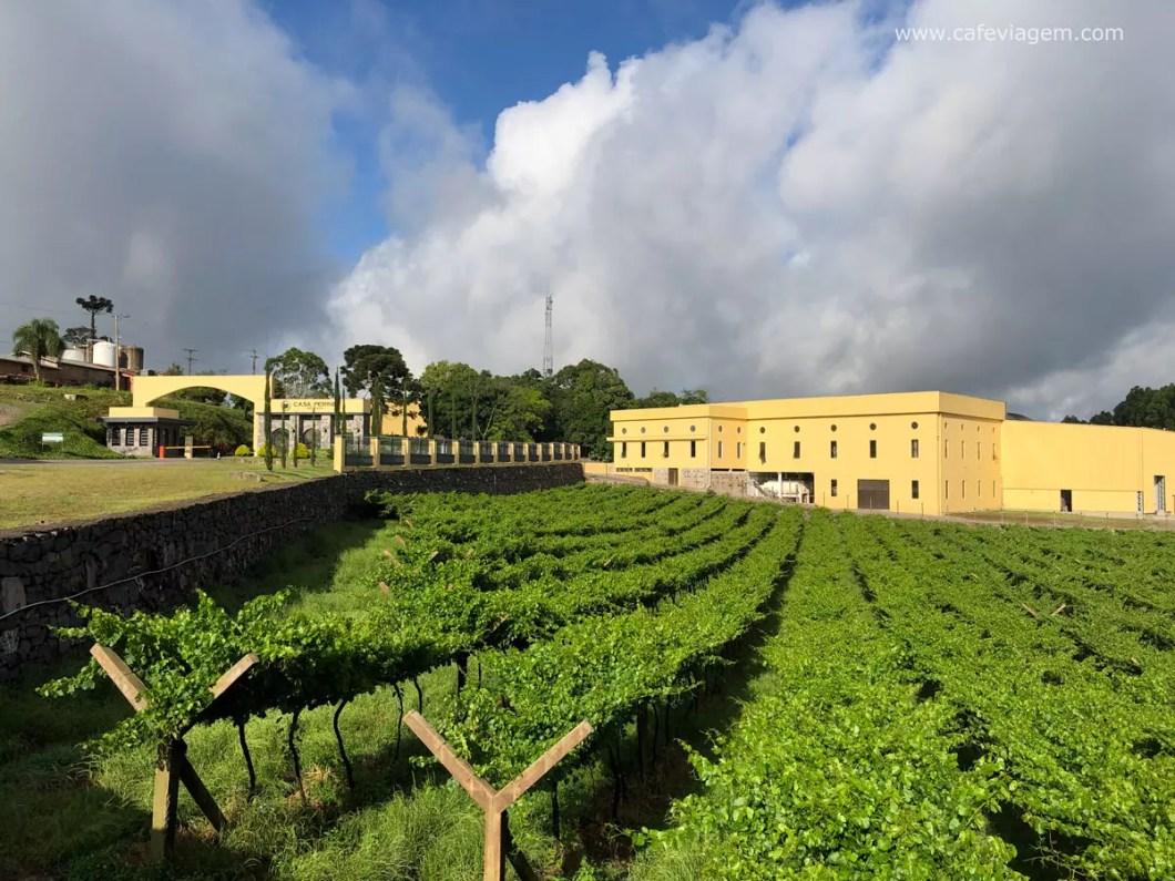 vinícola Perini