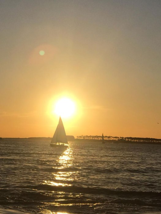 passeio-de-barco-Punta-del-Este-5