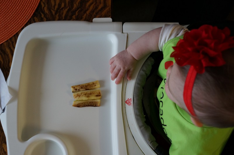 The Best Resources to Get You Started With Baby Led Weaning