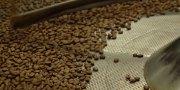 Why Choose Whole Bean Coffee?