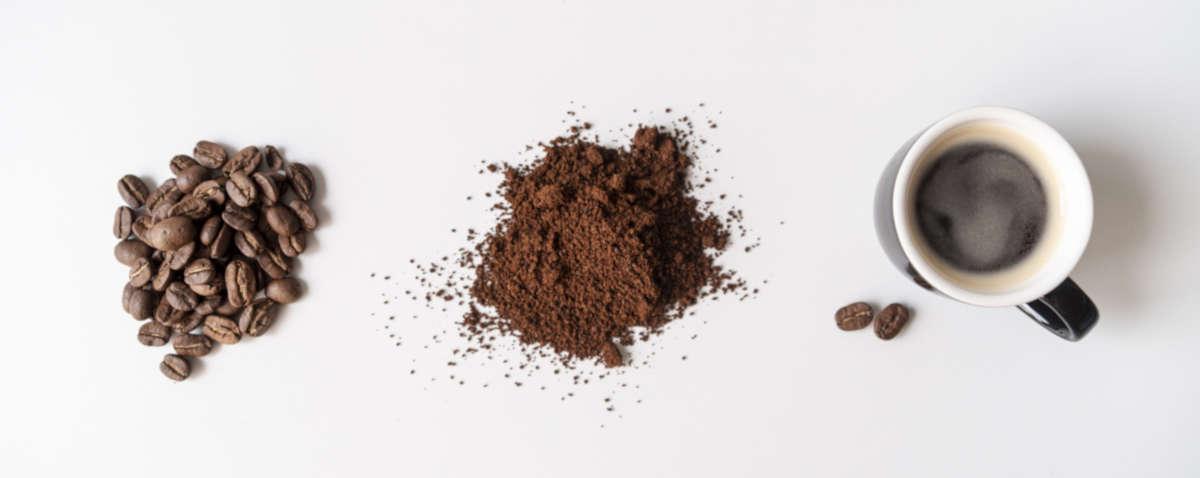 Ingredienti del caffè - Caffè Orlando