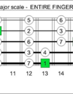 Baged octaves fingerboard  major scale intervals also blogozon no string bass box shapes plus keith  rh cagedoctaves