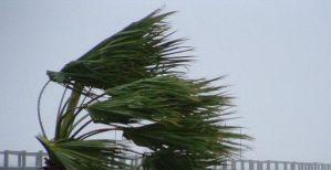 Allerta meteo, forti  venti di maestrale