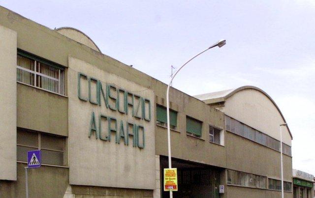 Tocco (FI) sulla situazione di crisi del Consorzio Agrario di Sardegna