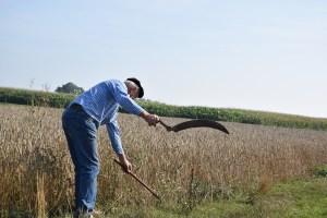 """Pagamenti Agricoltura, Murgia (Regione): """"Abbiamo sempre comunicato i veri dati"""""""
