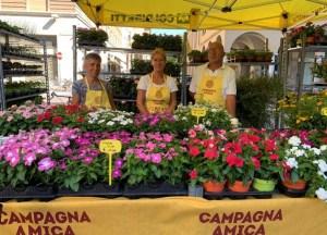 Coldiretti Sardegna. Domani, i fiori coloreranno i mercati di Campagna Amica