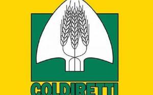 Coldiretti NU-OG: un tavolo regionale per le cavallette