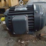 Agen Electric Motor Teco