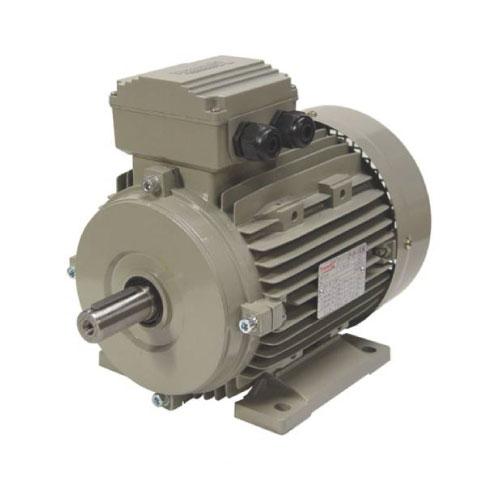 Electrik Motor Merk TRANSMAX
