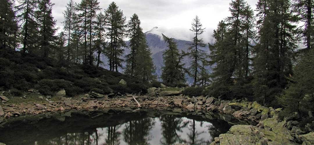 20 maggio 2018 · Lago del Grillo (Valchiavenna)
