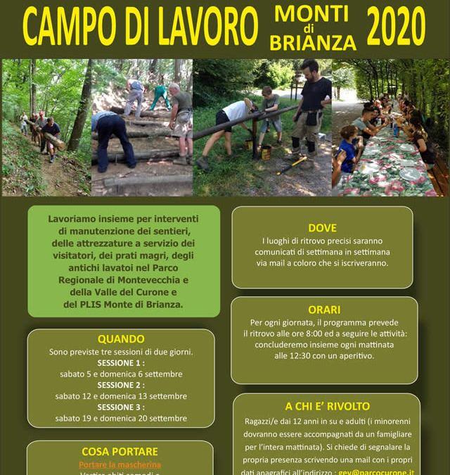 Campi di Lavoro Monti di Brianza 2020