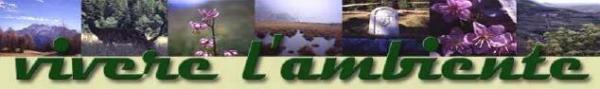 VLA-logo