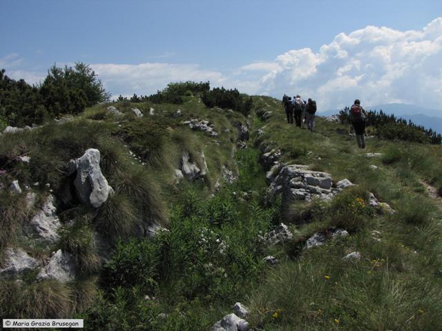 SENTIERO DELLA PACE 2010 - 2a tappa - Monte ALTISSIMO (Monte Baldo) (4)