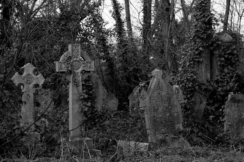 A graveyard of our ancestors