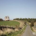 Wildcrafting in Scottish Lowlands – April 2016