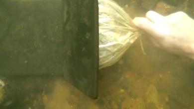 كنز تحت الماء