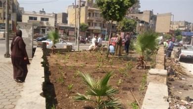 زراعة مليون شجرة