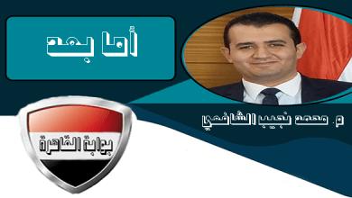 محمد نجيب الشافعي